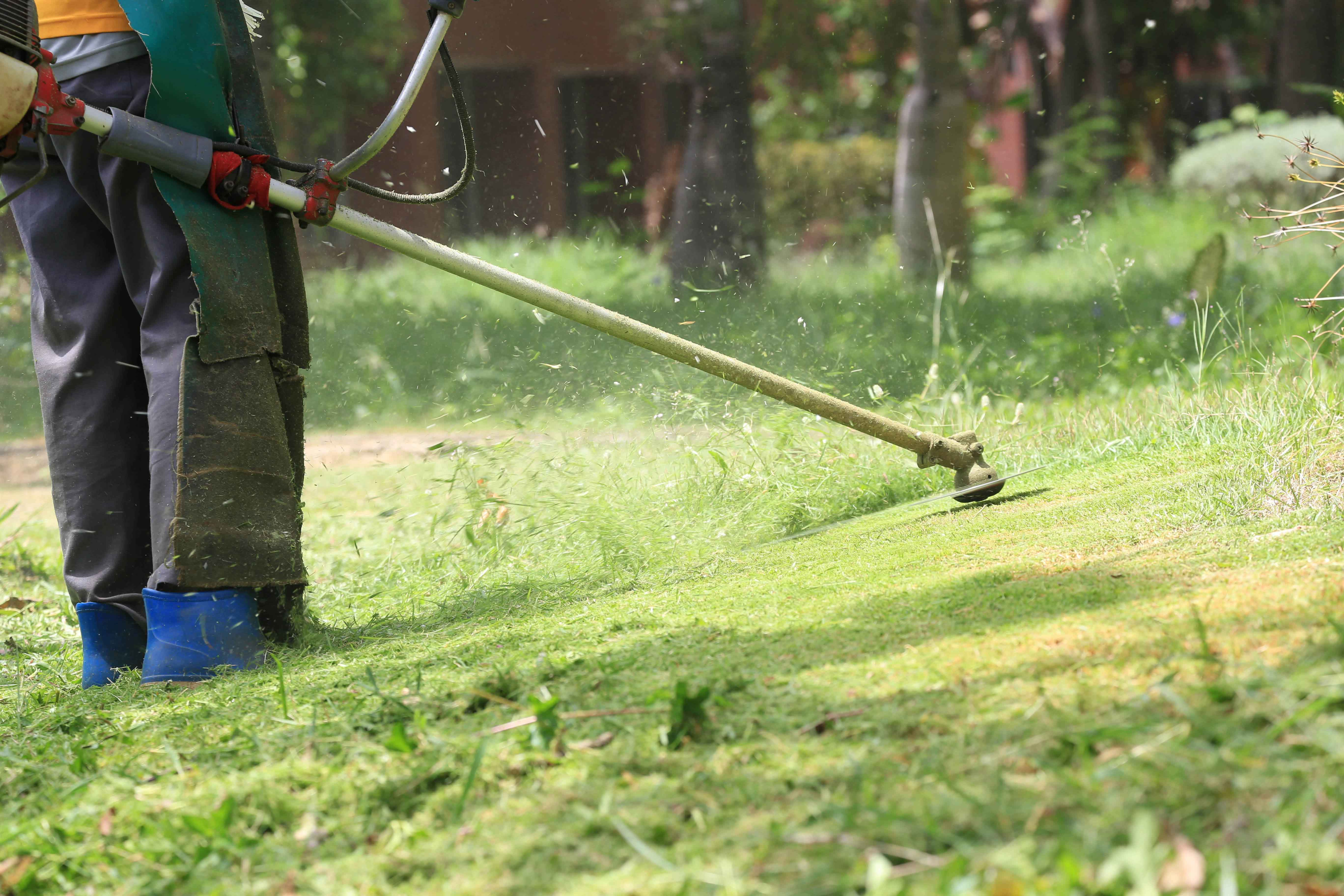 Whether You Have An Immaculately Presented Lawn Or Estate Where Maintenance Is Irritation To The Business